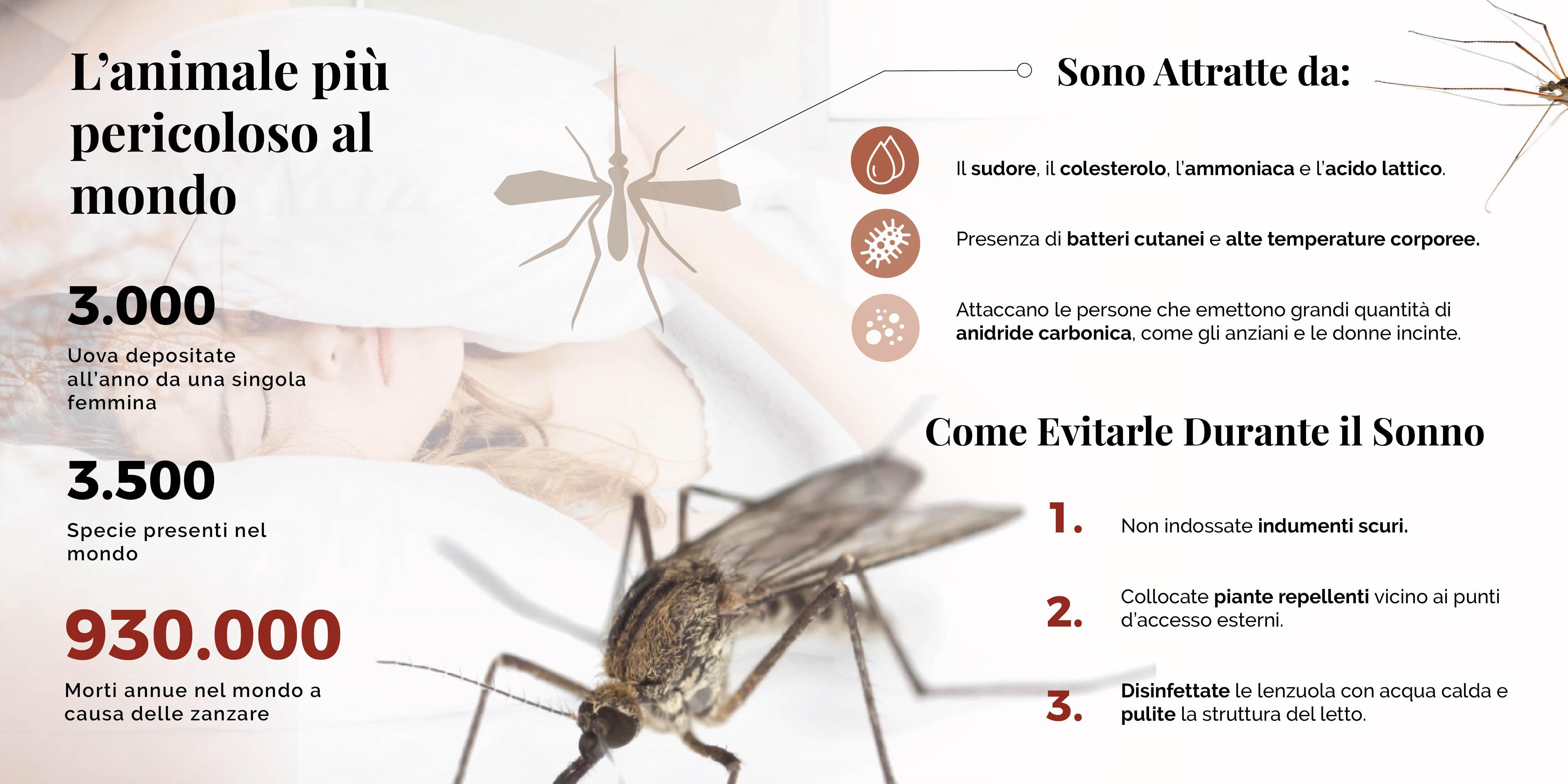 Come evitare le punture di zanzara nel mosquitoday - 20 agosto